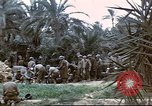 Image of 1st Division soldiers Africa, 1942, second 11 stock footage video 65675060792