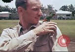 Image of The U.S. Army 17th Pursuit Squadron at Nichols Field Philippines, 1941, second 5 stock footage video 65675060832