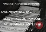 Image of Dog water skiing California United States USA, 1934, second 1 stock footage video 65675061011