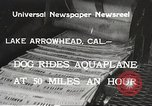 Image of Dog water skiing California United States USA, 1934, second 2 stock footage video 65675061011