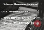 Image of Dog water skiing California United States USA, 1934, second 5 stock footage video 65675061011