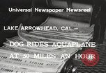 Image of Dog water skiing California United States USA, 1934, second 7 stock footage video 65675061011