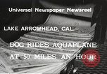 Image of Dog water skiing California United States USA, 1934, second 8 stock footage video 65675061011