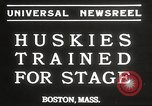 Image of dogs training for stage performance Boston Massachusetts USA, 1934, second 2 stock footage video 65675061028
