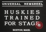 Image of dogs training for stage performance Boston Massachusetts USA, 1934, second 6 stock footage video 65675061028