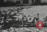 Image of Pplar Bear swim Chicago Illinois USA, 1934, second 9 stock footage video 65675061029