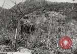 Image of United Nations troops Hungnam North Korea, 1952, second 5 stock footage video 65675061064