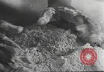 Image of Hitler Madchen Germany, 1944, second 11 stock footage video 65675061189