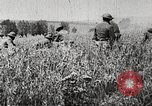 Image of United States troops advance Argonne forest France, 1918, second 11 stock footage video 65675061250