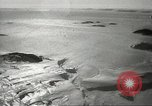 Image of penguins McMurdo Sound Antarctica, 1955, second 8 stock footage video 65675061344