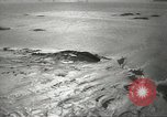 Image of penguins McMurdo Sound Antarctica, 1955, second 10 stock footage video 65675061344
