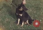 Image of 377th Air Police Security Squadron Vietnam, 1966, second 2 stock footage video 65675061422