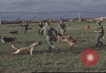 Image of 377th Air Police Security Squadron Vietnam, 1966, second 11 stock footage video 65675061422