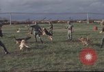 Image of 377th Air Police Security Squadron Vietnam, 1966, second 12 stock footage video 65675061422