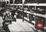 Image of Polish prisoners Poland, 1945, second 1 stock footage video 65675061515