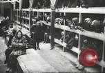Image of Polish prisoners Poland, 1945, second 6 stock footage video 65675061515