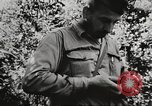 Image of Frank Merrill Myitkyina Burma, 1944, second 2 stock footage video 65675061540