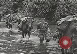 Image of Merrill's Marauders Myitkyina Burma, 1944, second 2 stock footage video 65675061542