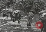 Image of Merrill's Marauders Myitkyina Burma, 1944, second 3 stock footage video 65675061542