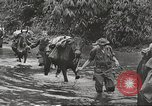 Image of Merrill's Marauders Myitkyina Burma, 1944, second 4 stock footage video 65675061542