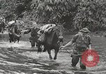Image of Merrill's Marauders Myitkyina Burma, 1944, second 5 stock footage video 65675061542