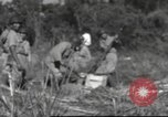 Image of Chiense soldiers Burma, 1943, second 4 stock footage video 65675061561