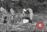 Image of Chiense soldiers Burma, 1943, second 12 stock footage video 65675061561