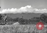 Image of Chinese soldiers Burma, 1943, second 7 stock footage video 65675061564