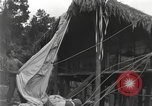 Image of Merrill's Marauders Burma, 1944, second 5 stock footage video 65675061590