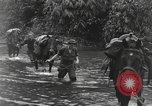 Image of Merrill's Marauders Burma, 1944, second 9 stock footage video 65675061591