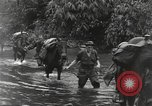 Image of Merrill's Marauders Burma, 1944, second 11 stock footage video 65675061591