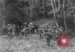 Image of Merrill's Marauders Burma, 1944, second 4 stock footage video 65675061592