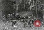 Image of Merrill's Marauders Burma, 1944, second 10 stock footage video 65675061592