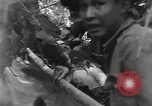 Image of Merrill's Marauders Burma, 1944, second 4 stock footage video 65675061594