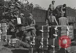 Image of United States soldiers Burma, 1944, second 6 stock footage video 65675061648