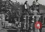 Image of United States soldiers Burma, 1944, second 8 stock footage video 65675061648