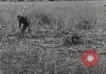 Image of C-47 aircraft Burma, 1944, second 11 stock footage video 65675061654