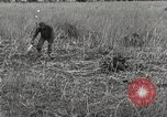 Image of C-47 aircraft Burma, 1944, second 12 stock footage video 65675061654