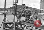 Image of Korean War Korea, 1951, second 5 stock footage video 65675061713