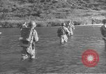 Image of Korean War Korea, 1954, second 7 stock footage video 65675061714