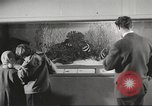 Image of tropical fishes Holland Netherlands, 1965, second 7 stock footage video 65675061772