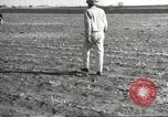 Image of damage from drought Texas United States USA, 1967, second 9 stock footage video 65675061793