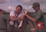 Image of 88th Military Police Corps Vietnam, 1965, second 12 stock footage video 65675061961