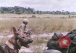 Image of 1st Infantry Division Vietnam, 1965, second 11 stock footage video 65675061979