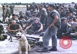 Image of scout dogs Vietnam, 1966, second 4 stock footage video 65675062005