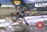 Image of scout dogs Vietnam, 1966, second 10 stock footage video 65675062005
