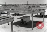 Image of sentry dogs San Antonio Texas USA, 1965, second 12 stock footage video 65675062012