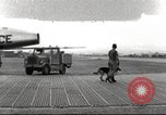 Image of sentry dogs Vietnam, 1965, second 1 stock footage video 65675062013