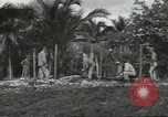 Image of United States Army Air Forces Guam Mariana Islands, 1944, second 9 stock footage video 65675062249