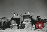 Image of Russian farmers Soviet Union, 1941, second 12 stock footage video 65675062264